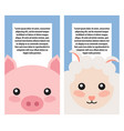 sheep and pig heads on book covers posters design vector image vector image
