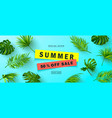 summer sale bannerbeautiful background with vector image vector image