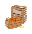 Wooden box full of peach isolated vector image vector image