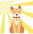 basenji dog with closed eyes on sunny background vector image