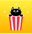 black cat sitting in popcorn box movie cinema vector image vector image