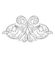 classical baroque ornament vector image