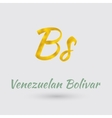 Golden Symbol Venezuelan Bolivar vector image vector image