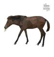 Horse polygon vector image vector image