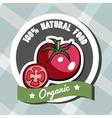 Natural Food 9 vector image vector image