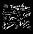 tropical holiday hand written typography vector image vector image