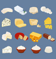 types cheese organic dairy product vector image vector image