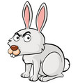 white rabbit with angry face vector image