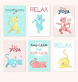 cats yoga card template set vector image