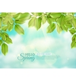 Green Leaves In Rays Of Spring Sun vector image vector image