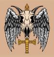 skull goat wing vector image
