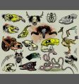 animal skulls and skeletons vector image
