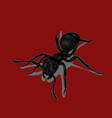 ants black vector image vector image