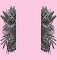 black white floral botanical border pink vector image vector image