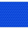 Blue Pattern Hexagon Mosaic