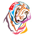 colorful decorative portrait of dog shar pei vector image vector image