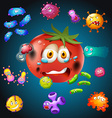 Fresh tomato with bacteria vector image vector image