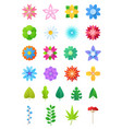 paper flowers floral decoration or flowered vector image vector image