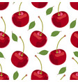 cherry fruits seamless pattern fresh organic vector image