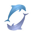 couple of playing dolphins for your creativity vector image vector image
