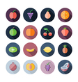 Flat Design Icons For Fruits vector image