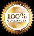 Guarantee seal vector image
