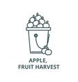 apple fruit harvest line icon apple vector image