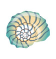 beautiful blue seashell an empty shell of a sea vector image vector image