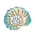 beautiful blue seashell an empty shell of a sea vector image