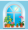 flowers window blue vector image
