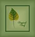 Jungle design vector image vector image