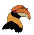 Portrait of Great hornbill on white background vector image vector image