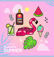 set of summer tropical elements vector image