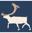 The Northern deer Blue background vector image vector image