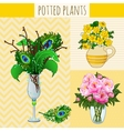Three floral composition in vases vector image vector image