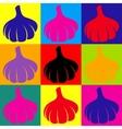 Garlic simple icon vector image
