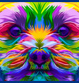 colorful close up yorkshire terrier dog vector image vector image