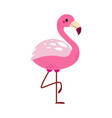 cute flamingo beautiful bird exotic tropical vector image vector image