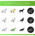 different animal species icons set vector image