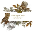 Forest greeting card with owls spruce and fir vector image vector image