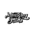 monterey jack organic food calligraphy vector image vector image