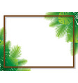 sale banner poster design with palm leaves vector image