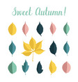 set with autumn leaves isolated on white vector image vector image