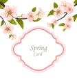 Spring Elegant Card with Blossoming Tree Branches vector image vector image