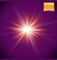 realistic bright and glowing sun star burst vector image