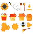set of honey flat design elements isolated vector image