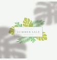tropical leaves summer sale card template vector image