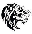 lion head tattoo vintage engraving vector image