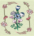 bouquet wild flowers olive background vector image