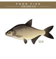 Bream Food Fish vector image